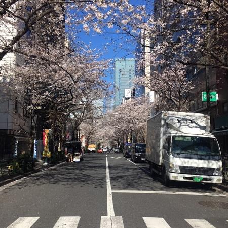 桜200323 IMG_0710.jpg